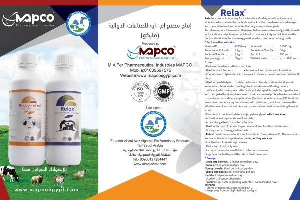 saudi-brochure-21E9601DA-FBB4-9F2E-EBDB-6C91FDD5C09C.jpg