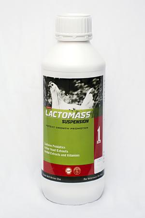 Lactomass (LIQ)